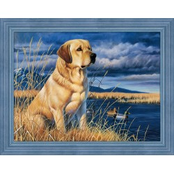 Diamond Painting Labrador