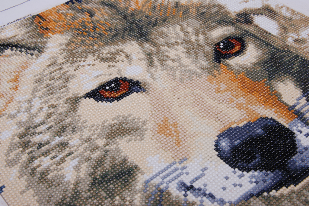 Diamond Painting Wolf II