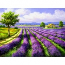 Diamond Painting  Lavendel veld