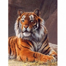 Diamond Painting Tijger