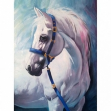 Diamond Painting Wit Paard