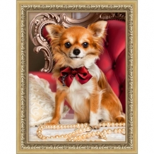 Diamond Painting Chihuahua met Strik