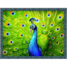 Diamond Painting Pauw