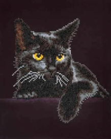 Diamond Painting Midnight Cat
