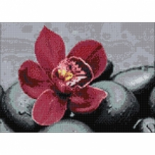 Diamond Painting Orchidee Royal