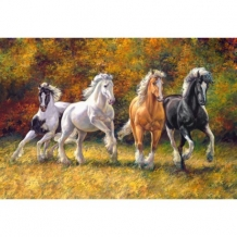 Diamond Painting 1 meter breed Gallop