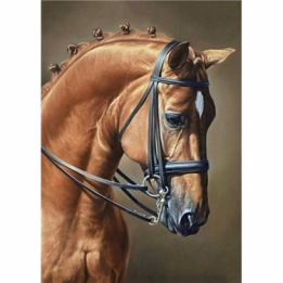 Diamond Painting Elegant Paard